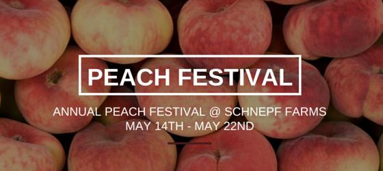 AZEXP Peach Festival- Newsletter