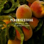 Peach Festival at Schnepf Farms
