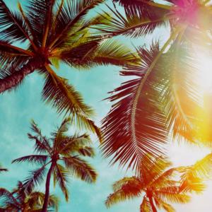 AZ Resort Summer Deals